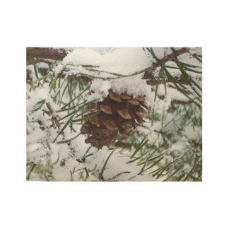 Snowyのマツ円錐形Iの冬の自然の写真撮影 ウッドポスター