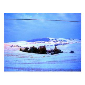 Snowyの丘 ポストカード