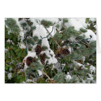 Snowyの松の木およびマツ円錐形 カード