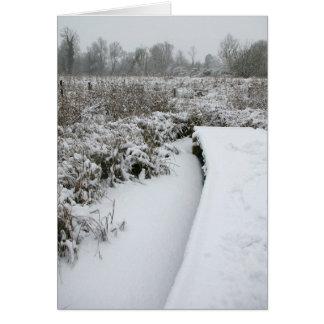 Snowyの池 カード