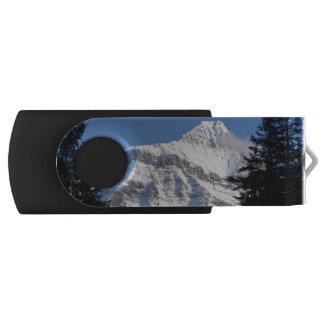 Snowy山 USBフラッシュドライブ