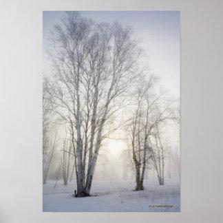 Snowy日の白い木 ポスター