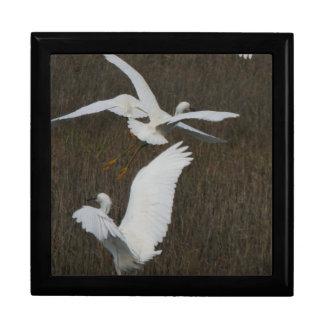 Snowy白鷺の鳥の野性生物の動物のギフト用の箱 ギフトボックス