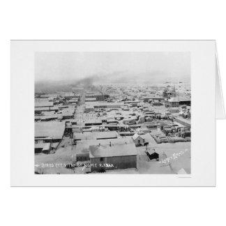 Snowy Nome、アラスカBirdseye 1924年 カード