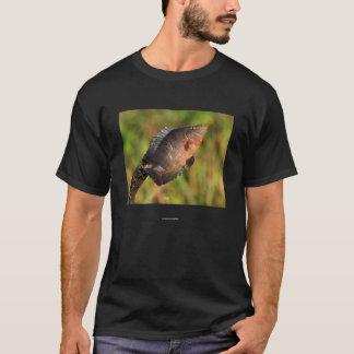 Socrates Tシャツ