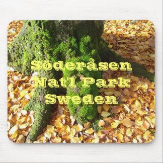 Söderåsenの国立公園の秋 マウスパッド