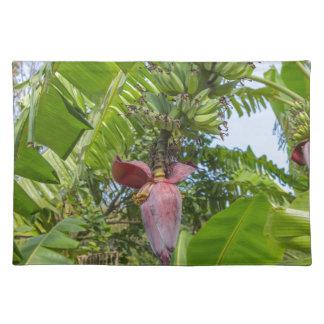 Sok Kwu弱々しいラマ島のバナナ園 ランチョンマット