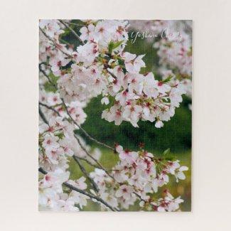 Somei-yoshino: Cherry Blossoms [Jigsaw puzzle] ジグソーパズル