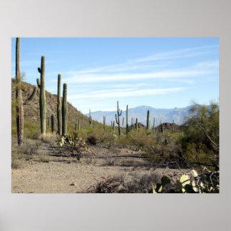 Sonoranの砂漠場面02 ポスター