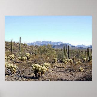 Sonoranの砂漠場面04ポスター ポスター