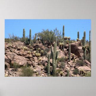 Sonoranの砂漠、アリゾナのサグアロのサボテン ポスター