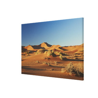 SossusvleiのNamibの砂漠の景色、 キャンバスプリント
