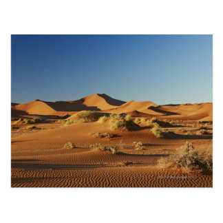 SossusvleiのNamibの砂漠の景色、 ポストカード