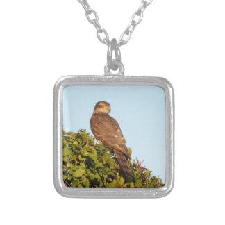 Sparrowhawk シルバープレートネックレス