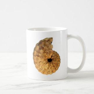 Spathitesのpuercoensis白亜アンモナイト化石 コーヒーマグカップ