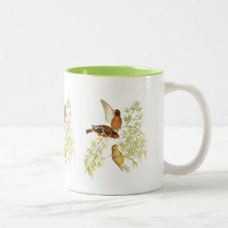 Spectacledフィンチ ツートーンマグカップ