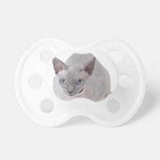 Sphynx猫 おしゃぶり