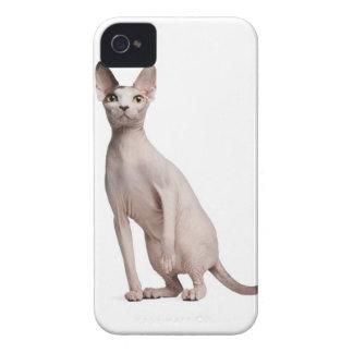Sphynx (13か月古い) Case-Mate iPhone 4 ケース