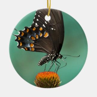 Spicebushのアゲハチョウの蝶- Papilioのtroilus セラミックオーナメント
