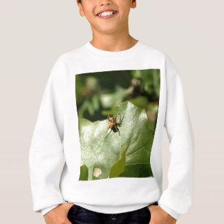Spider_Leaf_Robers_Cave スウェットシャツ