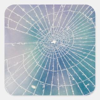 Spiderweb スクエアシール