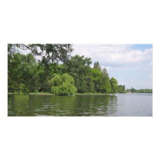 spring湖 カード