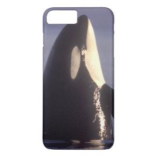 Spyhoppingのシャチのシャチ(シャチのorcinus)近く iPhone 8 Plus/7 Plusケース