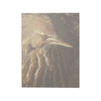Squaccoの鷲の鳥の野性生物動物 ノートパッド