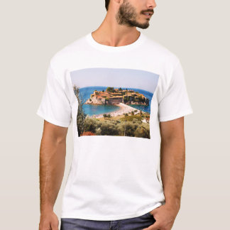 St.スティーブン Tシャツ