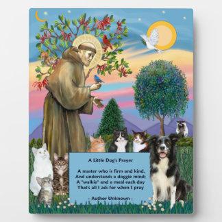 St. Francis -猫及びボーダーコリーのプラク フォトプラーク