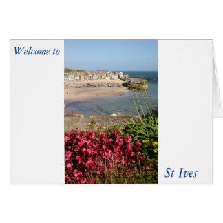 St Ives港のピンクの花 カード