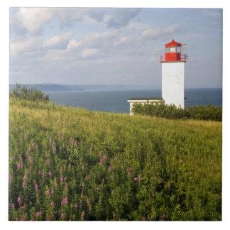 St Martins、ニューブランズウィックの灯台、 タイル