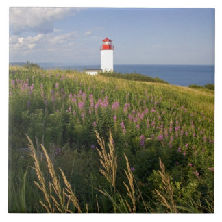 St Martins、ニューブランズウィック、2の灯台 タイル