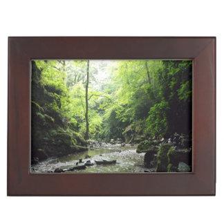 St Nectanの谷間のコーンウォールの写真 ジュエリーボックス