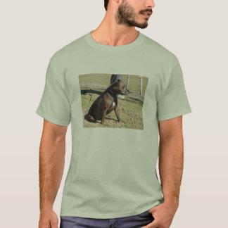 StaffieのTシャツ Tシャツ