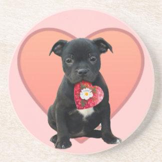 Stafforshireのブルテリアの子犬 コースター