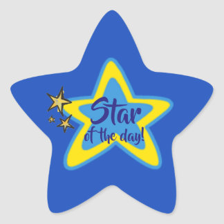 Star of the Day Student Stickers 星シール