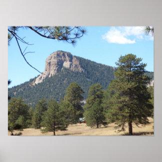 Stauntonの州立公園のマツコロラド州 ポスター