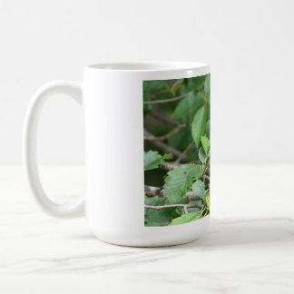 Stellerのジェイのマグ コーヒーマグカップ