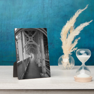 Stephensonsの高レベル橋、タインにニューキャッスル フォトプラーク