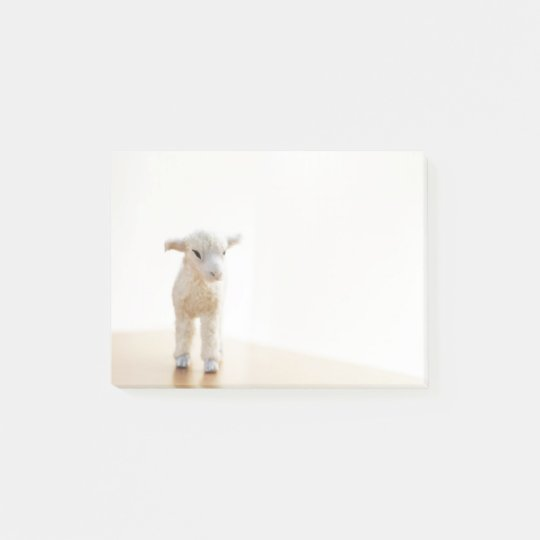 Sticky sheep ポストイット