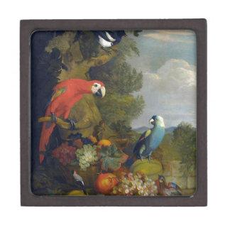STRANOVERトビアスのコンゴウインコの鳥動物のフルーツの自然 ギフトボックス