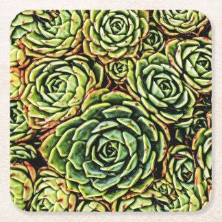 Succulentsのコースター スクエアペーパーコースター