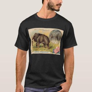 Suchard Chocolatのマンモスのアンティークカード Tシャツ