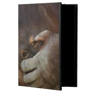 Sumatranのオランウータン、Pongoのpygmaeus iPad Airケース