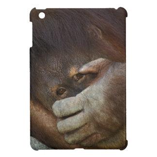 Sumatranのオランウータン、Pongoのpygmaeus iPad Miniケース