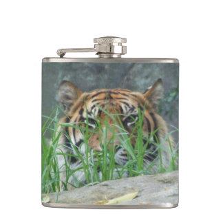 Sumatranのトラのフラスコ フラスク