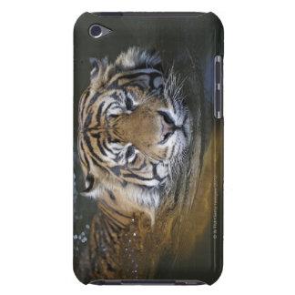 Sumatranのトラ、ヒョウ属のチグリス川のsumatrae Case-Mate iPod Touch ケース