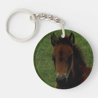 Summsrを休ませているDartmoorの子馬の子馬 キーホルダー