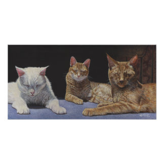 Sunbathersの虎猫および白い猫の芸術ポスター ポスター